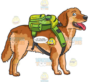 A Golden Brown Dog With A Backpack