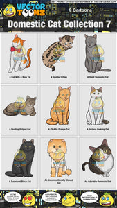 Domestic Cat Collection 7