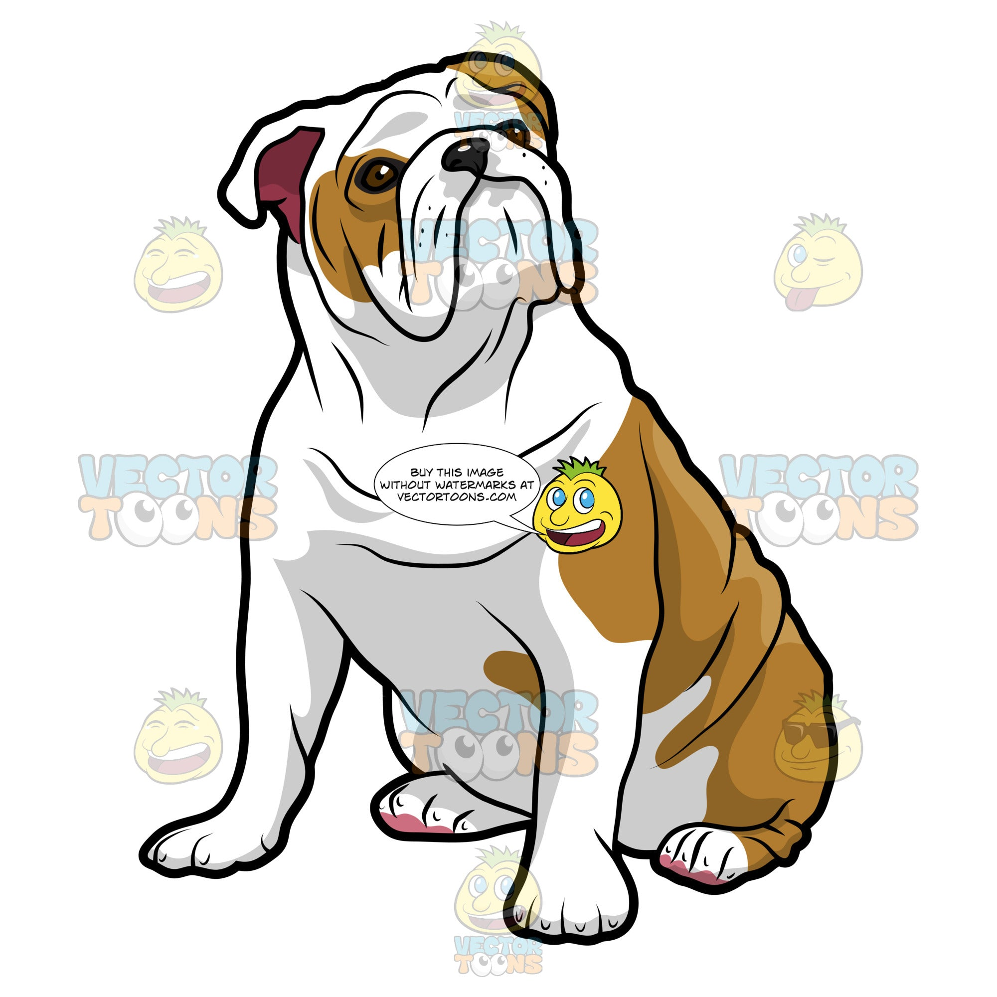 English Bulldog Sitting And Looking Left
