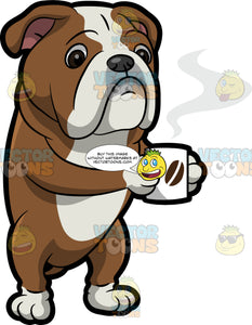 An English Bulldog Drinking A Hot Cup Of Coffee