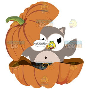 Grey Owl Popping Out Of Pumpkin Clamshell