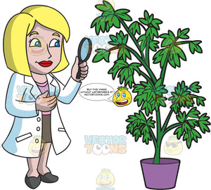 A Charming Female Botanist Inspecting The Leaves Of A Tall Plant