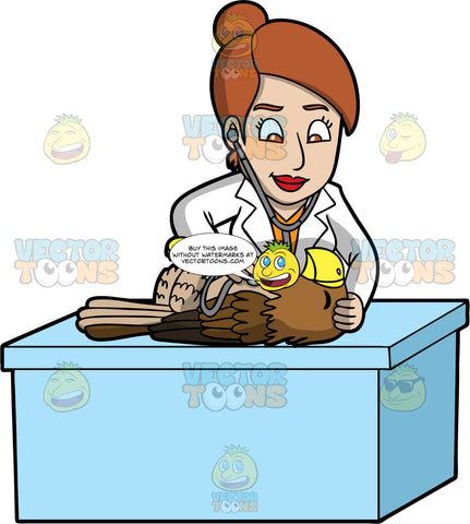 A Female Veterinary Doctor Checking The Heartbeat Of An Eagle. A female veterinarian with brown hair tied in a bun, wearing a white coat, orange blouse, smiles while checking the heartbeat of a big bird with brown feathers, yellow feet and beak, lying down on top of a light blue table