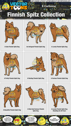 Finnish Spitz Collection
