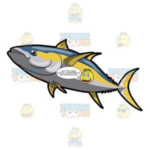 A Yellowfin Tuna