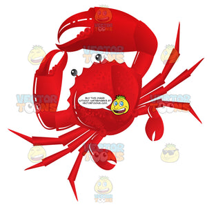 Whole Red Crab