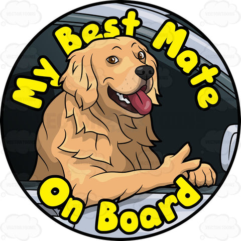 Furry Golden Retriever Dog Best Mate On Board Pin