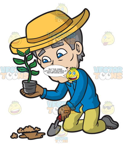 A Mature Man Placing A Plant In A Soiled Surface