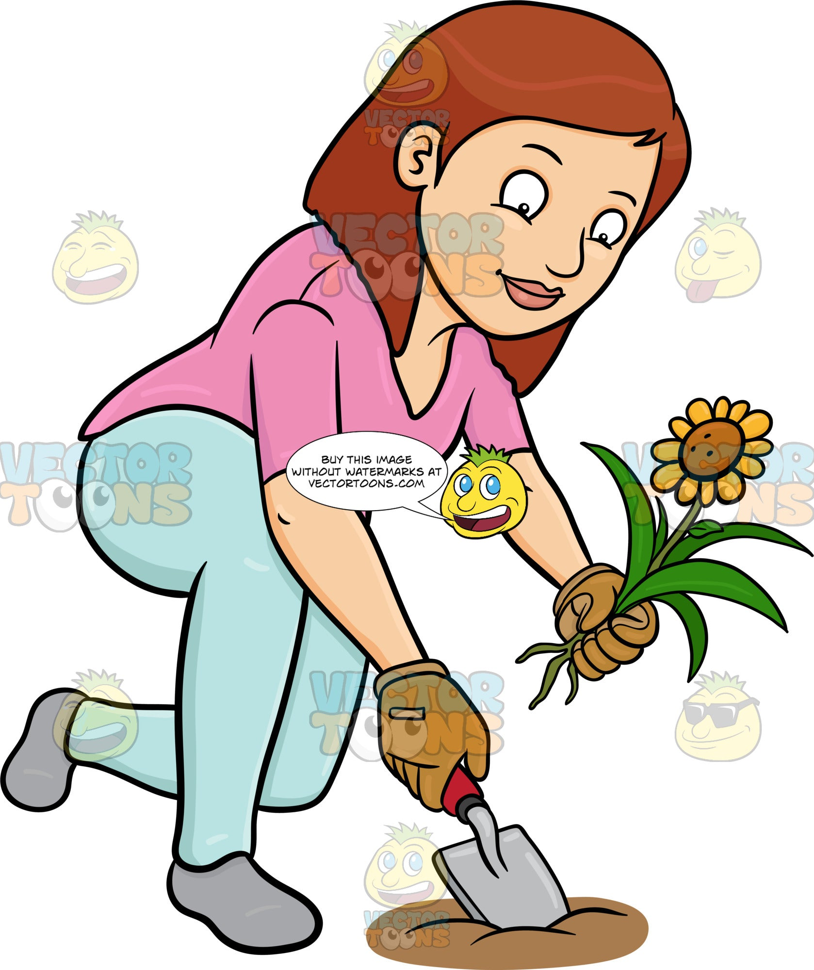 A Woman Transferring A Sunflower To A New Location
