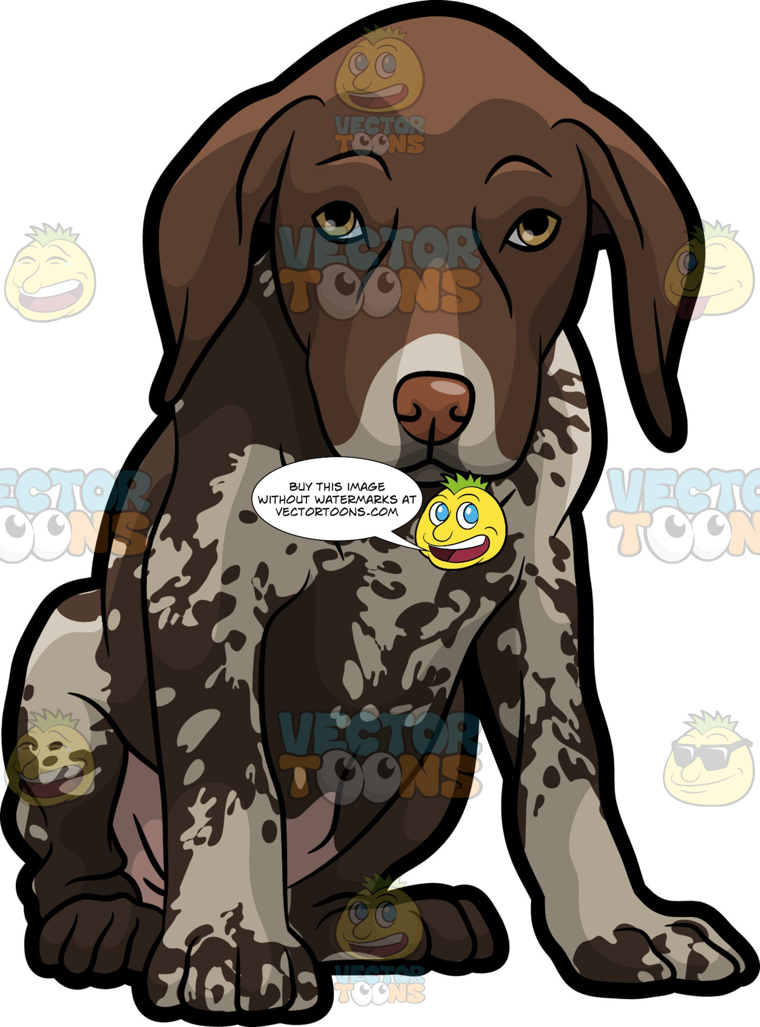 A Shy German Shorthaired Pointer Pet Dog