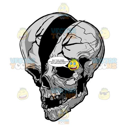 Decaying Cracked In Half Skull