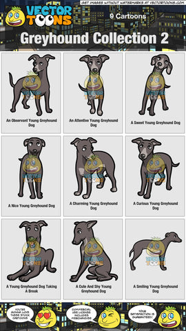 Greyhound Collection 2
