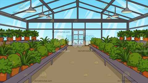 Inside A Greenhouse Background