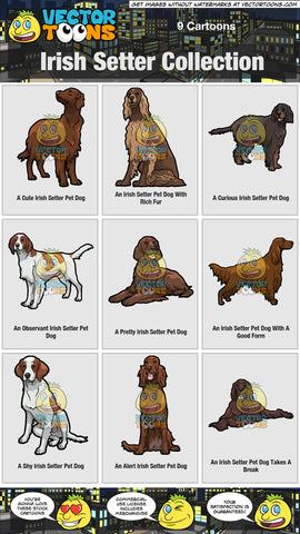 Irish Setter Collection