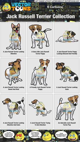 Jack Russell Terrier Collection