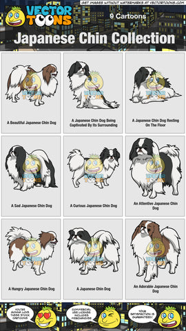 Japanese Chin Collection