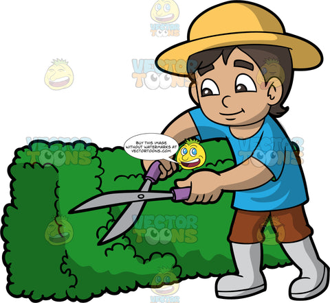 A Boy Trimming A Hedge With Clippers. A boy with dark brown hair, wearing brown pants, a blue shirt, light gray rubber boots, and a light yellow sun hat, using hedge clippers to trim a green shrub