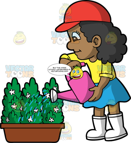 A Black Girl Watering A Green Plant With Small White Flowers. A black girl, wearing a blue skirt, a yellow shirt, white rubber boots, and a red hat, using a pink watering can to water a potted green plant with small white flowers
