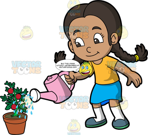 A young girl watering a tomato plant. A girl with brown hair tied in braids, wearing a blue skirt, a yellow shirt, white socks, and dark gray shoes, uses a pink watering can to water a tomato plant