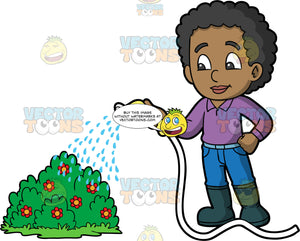 A black boy watering a flowering bush. A black boy wearing blue pants, a purple shirt, and dark gray rubber boots, using a hose to water a shrub with red flowers