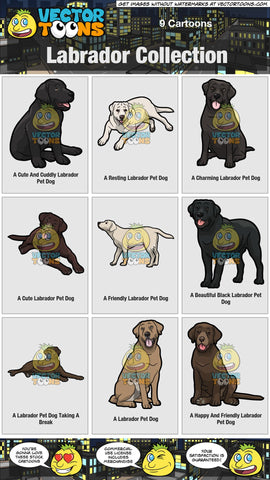Labrador Collection