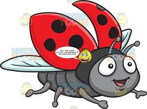 An Excited Flying Ladybug