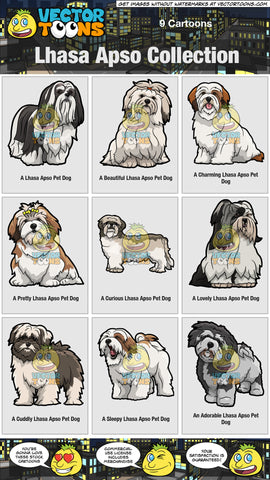Lhasa Apso Collection