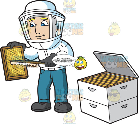 A Male Beekeeper Scraping The Honey Comb Frame