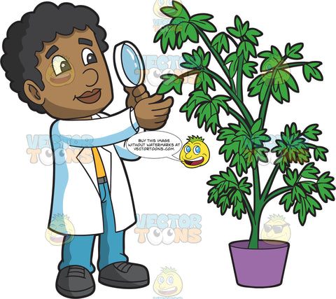 A Male Botanist Studying A Plant With A Magnifying Glass