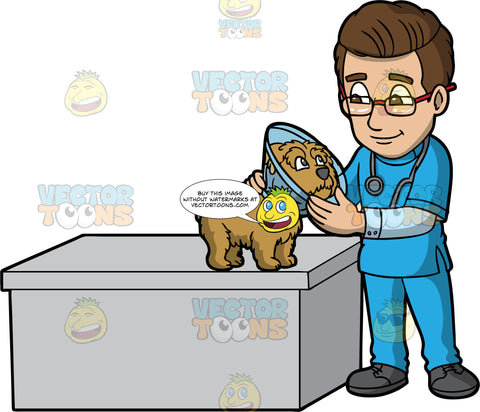 A Male Veterinary Doctor Taking Care Of A Dog With A Cone. A male veterinarian with brown hair. wearing a blue scrub suit over a light blue dress shirt, dark gray shoes, eyeglasses, a gray stethoscope around his shoulders, smiles while standing beside a gray desk, as he holds a cute puppy with brown coat, wearing a transparent blue pet cone