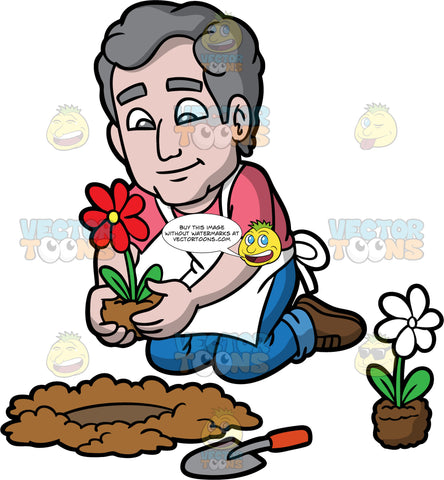 An Elderly Man Planting A Flower In The Ground. A man with gray hair, wearing blue jeans, a pink shirt, a white apron, and brown shoes, kneeling down and planting a red flower in a hole in the ground. A small hand shovel and a white flower in soil sit on the ground near him