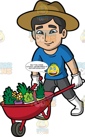 A Man Pushing A Wheelbarrow Full Of Plants. A man with black hair, wearing dark gray pants, a blue t-shirt, white rubber boots, white gloves, and a brown sun hat, pushing a red wheelbarrow filled with a variety of plants