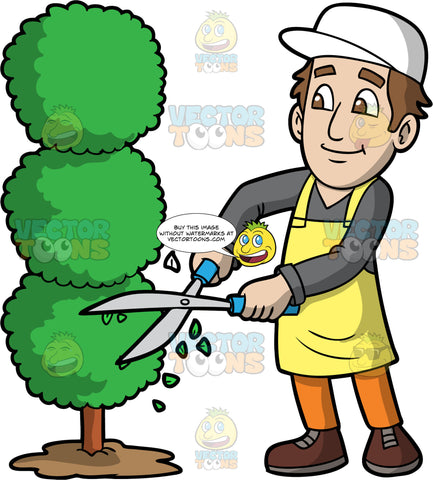 A Man Trimming A Tree Into An Artistic Shape. A man with brown hair and eyes, wearing orange pants, a dark gray shirt, brown boots, a yellow apron, and a white hat, standing and using clippers to trim a tree into circular shapes