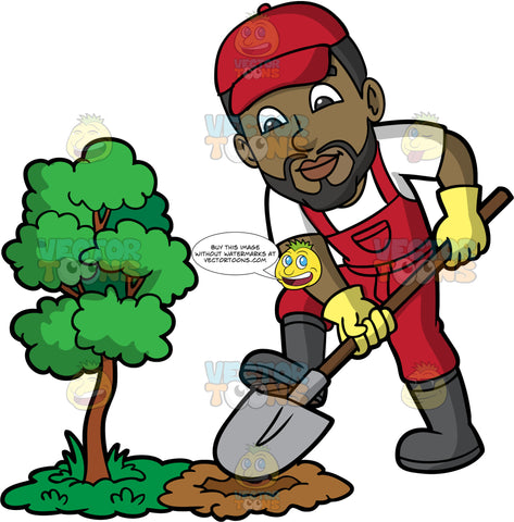 Calvin Digging A Hole Next To A Small Tree. A black man with a beard, wearing red overalls over a white t-shirt, gray rubber boots, a red hat, and yellow gardening gloves, digging a hole with a shovel next to a very small tree