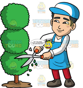Kevin Trimming A Tree With Hedge Clippers. An Asian man with black hair, wearing red pants, a white shirt, a blue apron, brown shoes, and a blue and white hat, using hedge clippers to trim a tree into circular shapes