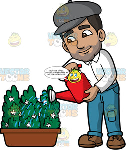 Gabriel Watering Some Flowering Bushes. A Hispanic man with dark brown hair and eyes, wearing blue jeans, a white shirt, brown lace up shoes, and a gray newsboy cap, using a red watering can to water a potted shrub with small white flowers