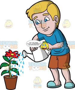 A man watering a red flower. A man with blonde hair and blue eyes, wearing brown shorts, a blue t-shirt, and blue slip on shoes, using a white watering can to water a potter red flower