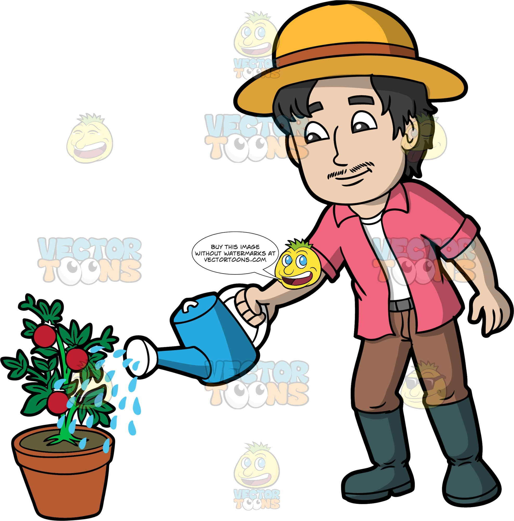 A Man Watering A Tomato Plant Clipart Cartoons By Vectortoons