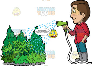 A man watering some outdoor shrubs. A man with brown hair and eyes, wearing blue pants, a red shirts, and gray rubber boots, uses a hose to water some green bushes