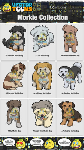 Morkie Collection