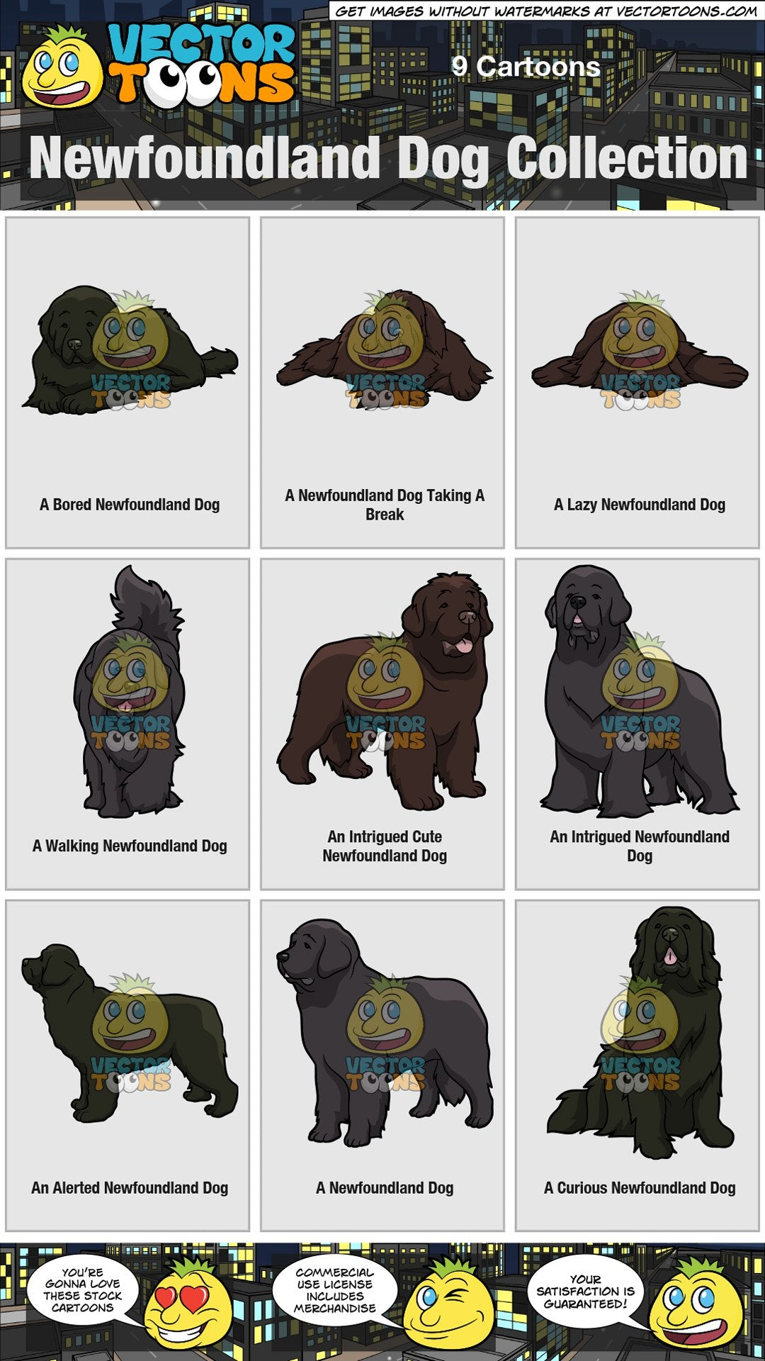 Newfoundland Dog Collection