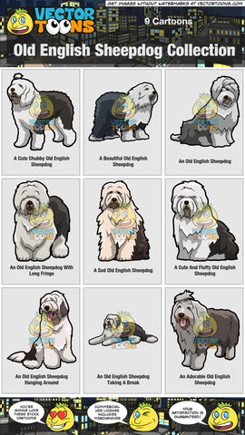 Old English Sheepdog Collection