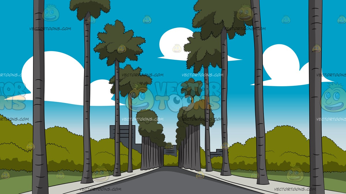 Palm Tree Lined Street In Tropical Southern California Background