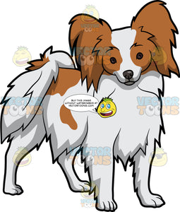 An Alerted Papillon Dog