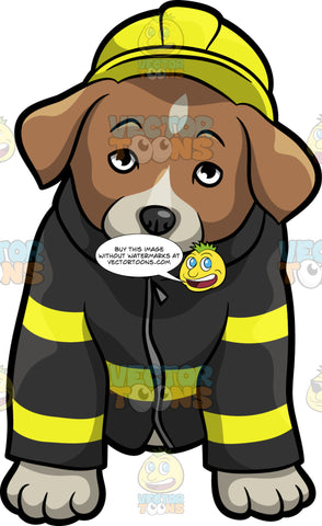 A Shy Fire Safety Puppy