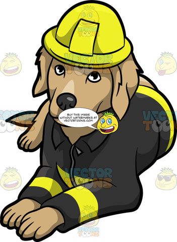 A Resting Fire Safety Dog