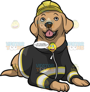 An Adorable Fire Safety Dog