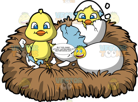 Don't Count Your Chickens Before They Hatch. A bird nest with a baby chick that has just hatched from it's egg, an egg hatching with just the head of the chick showing, and an un-hatched egg