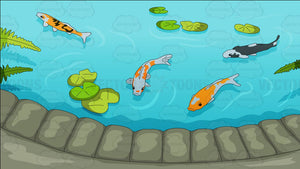 Pretty Koi Pond Background