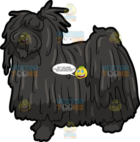 A Pretty Puli Dog